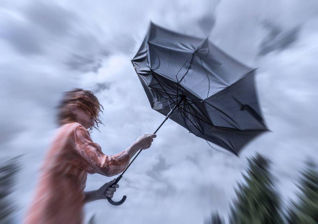 vento; guarda-chuva; mulher; tempestade