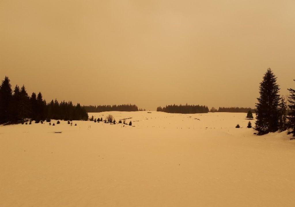 Photo prise le 6 février 2021 dans le Jura, illustrant la présence de poussières du désert du Sahara (Source : ACRO).
