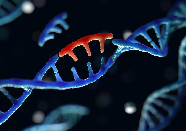 Geni mutanti di Poisson