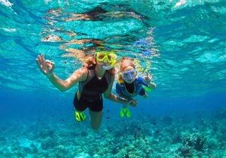 ¿Por qué no vemos bien bajo el agua?