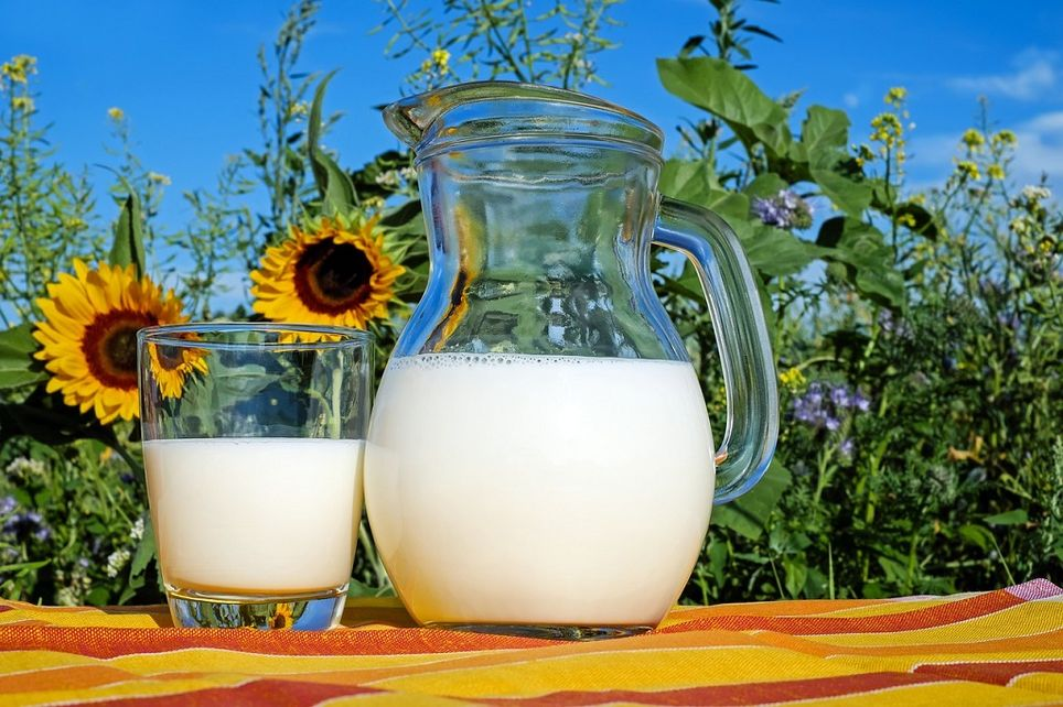Algunos alimentos ricos en vitamina D son los lácteos, los huevos y el pescado azul.