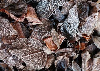 Pourquoi de telles amplitudes thermiques en ce début d'automne ?