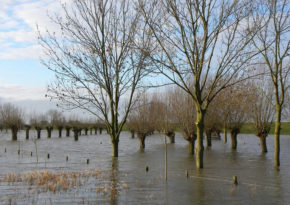 alluvione emilia romagna