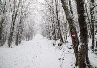 Previsioni Meteo: da mercoledì si cambia, freddo e neve in Appennino