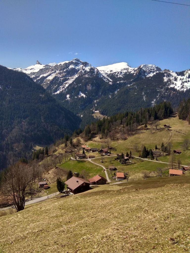 Primavera En Los Alpes