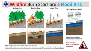 Primero incendios, después lluvias y al final la muerte