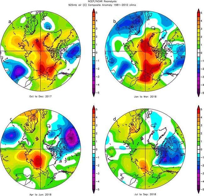 Problemas De Adaptación De Los Renos En Un ártico Más Cálido