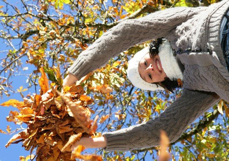 Mujer abrigada agarrando un montón de hojas secas otoñales.