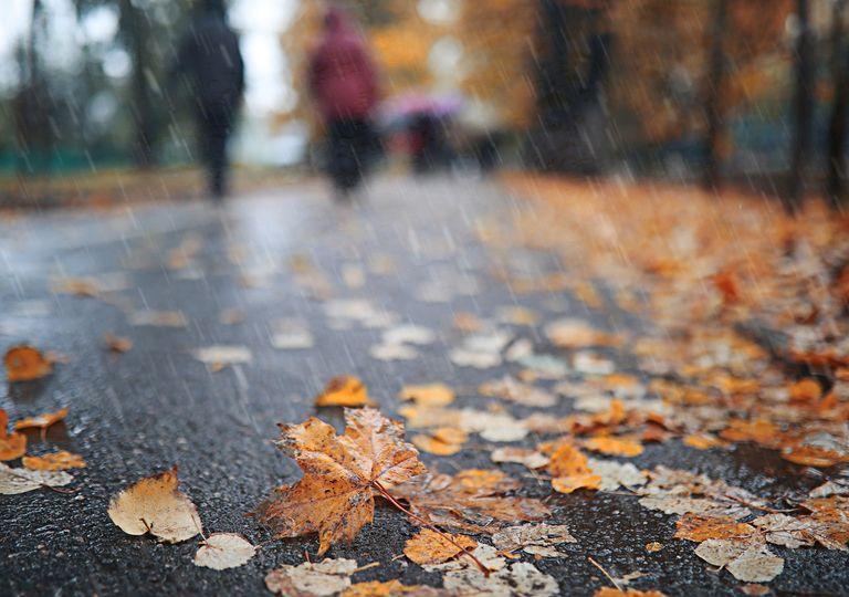 Suelo mojado por la lluvia y hojas esparcidas. Siluetas de personas de divisan distantes