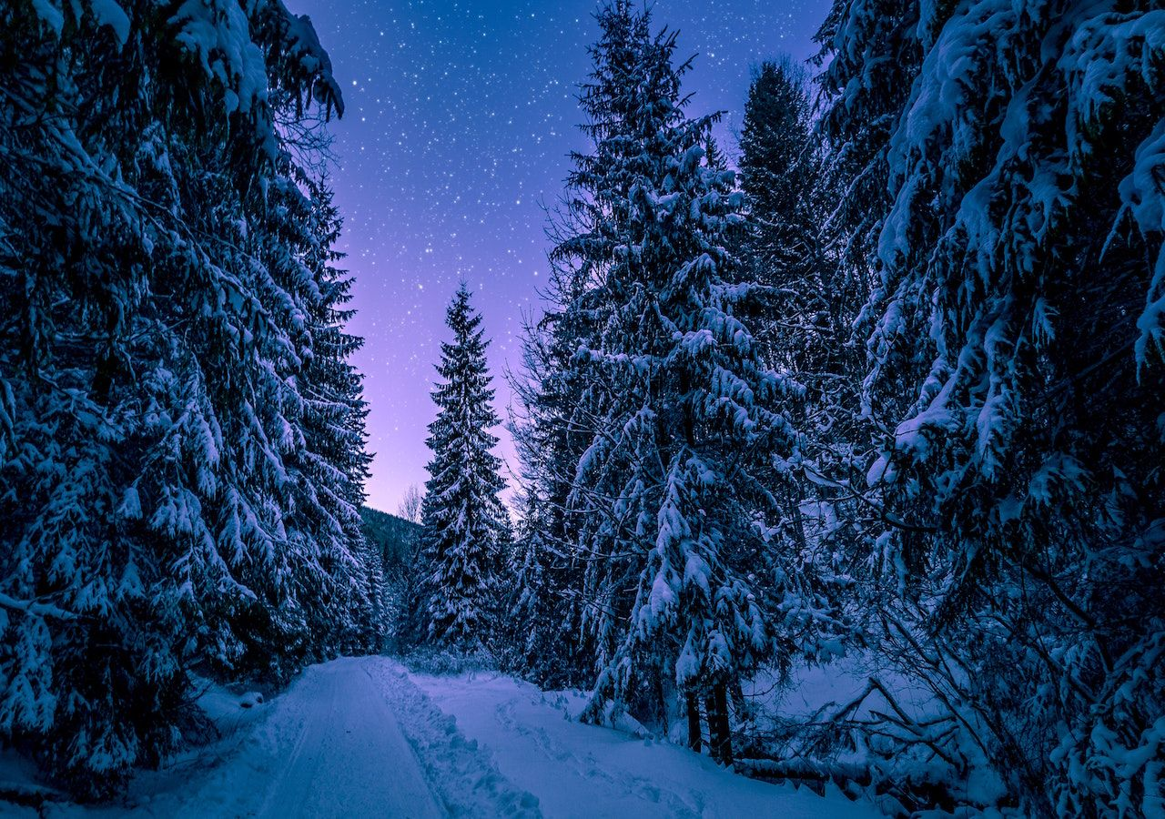Il Freddo Quando Arriva quando arriva il freddo ?