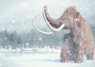 Quão fria foi a última Era do Gelo?
