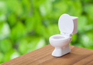 ¿Qué tienen que ver los baños con el cambio climático?