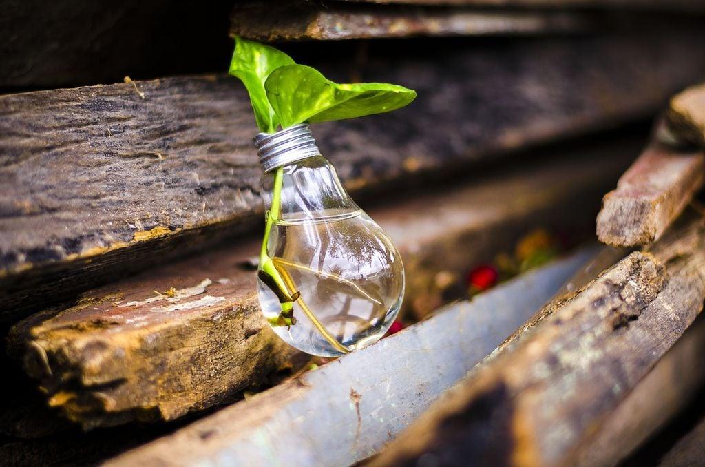La protección del medio ambiente es, a fin de cuentas, nuestro principal objetivo; y es motivador ver cómo, gracias al reciclaje, conseguimos entre todos tantos beneficios para el entorno.