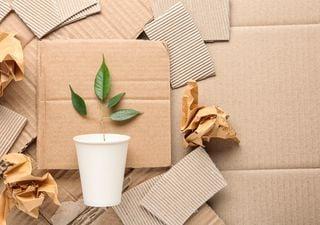 Reciclar papel solo ayuda al planeta si se usan energías renovables