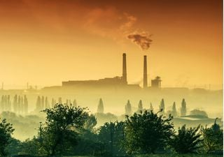 Recomendaciones de la OMS para una recuperación ecológica de COVID-19