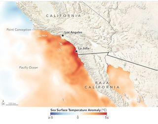 Record de temperaturas cálidas del agua en el sur de California