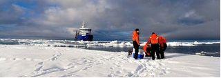 Red de Centros Regionales sobre el Clima para el Ártico