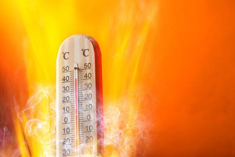 Reducir Muertes Por Olas De Calor