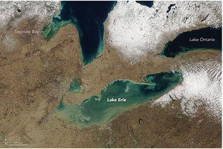 Remolinos de sedimentos de primavera en los Grandes Lagos