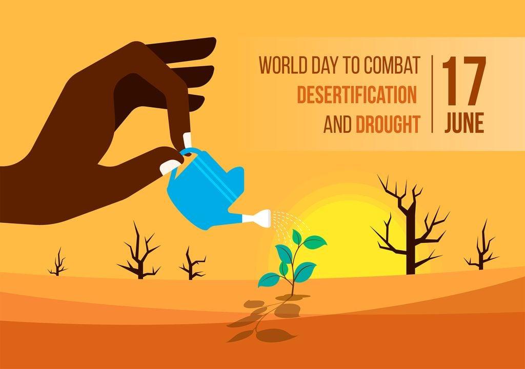Cada 17 de junio se celebra el Día Mundial de Lucha contra la Desertificación y la Sequía.
