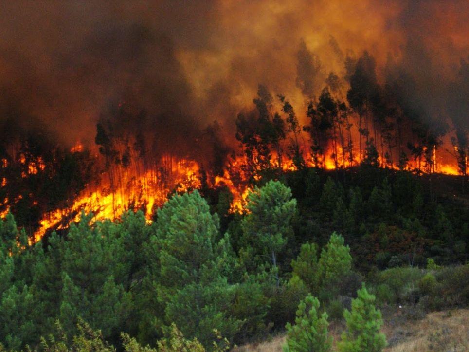 Varios incendios afectaron México en abril de 2019
