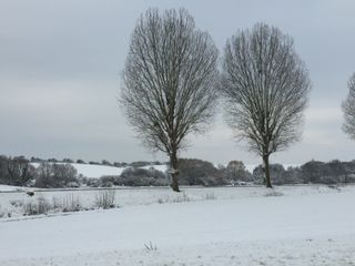 Retour de la neige en plaine : quelles régions touchées ce week-end ?