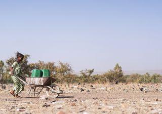 Regreso de La Niña: ¿cuáles son las consecuencias globales?
