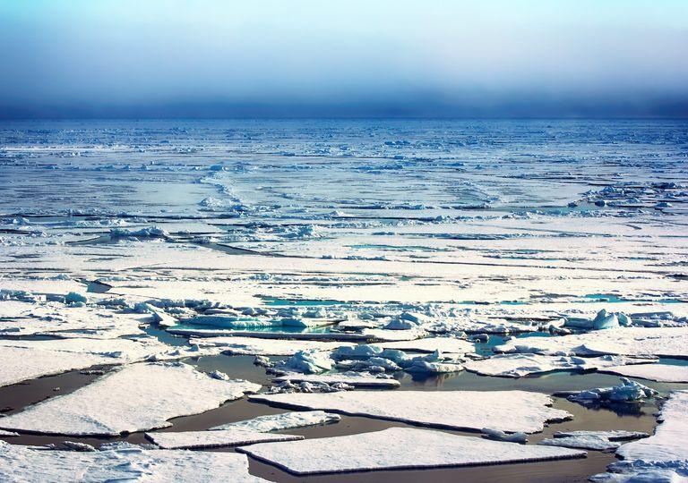 deshielo polar, cambio climático