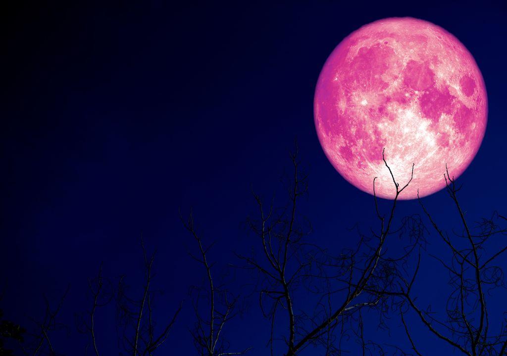 A primeira Super Lua de 2021