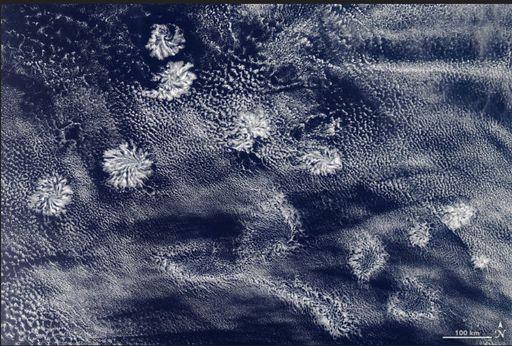 Rosetones de nubes en el cielo: las nubes actiniformes
