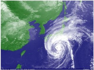 Rugby World Cup games cancelled as Typhoon speeds towards Japan