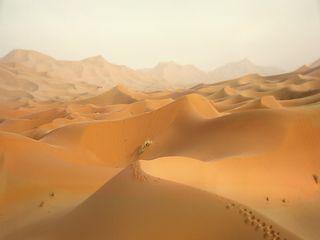 Saharastaub bringt am Wochenende Blutregen nach Deutschland!