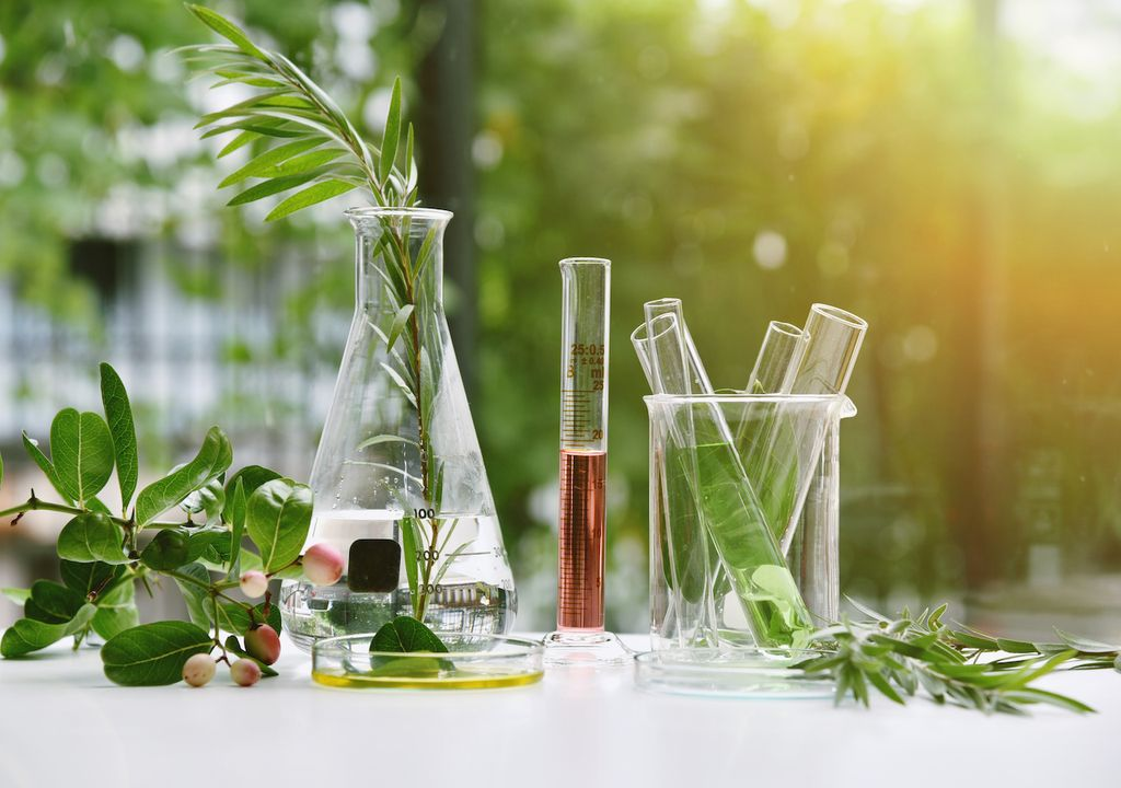 Research and development laboratory, playing a part in the green recovery.