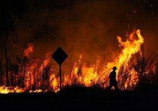 ¿Se podrían haber evitado los incendios de Australia?