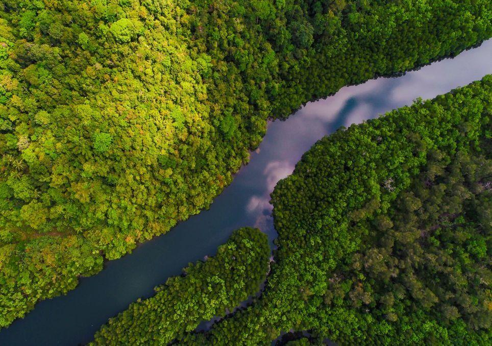 amazonas, amazonia, sequías, lluvia, selva, deforestación, humedad, nasa