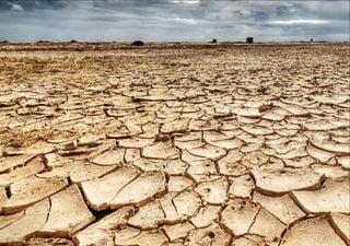 Extrem: Heftige Dürreperioden könnten in den Meeren beginnen!