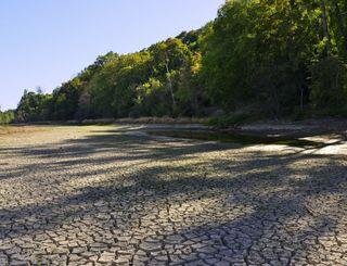 83 départements touchés par la sécheresse : l'inquiétude grandit !
