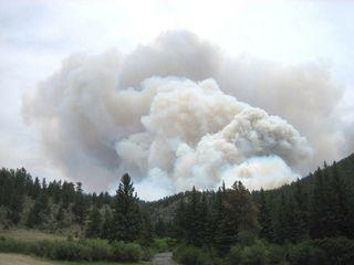 Sécheresse : recrudescence d'incendies ces derniers jours
