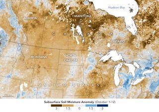 Sequía en Estados Unidos y Canadá afecta seriamente los cultivos
