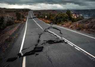 Será que os animais têm um 'sexto sentido' na deteção de sismos?