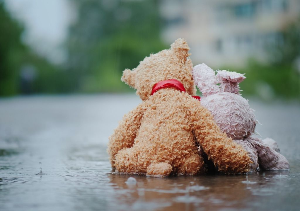 peluches tristes; lluvia