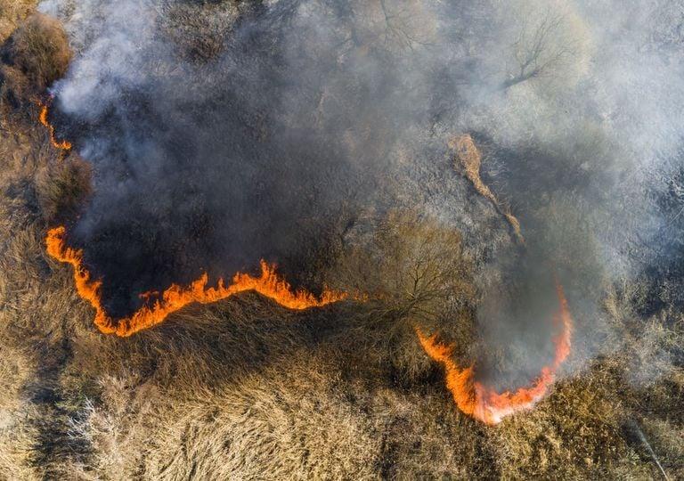 Waldbrände in Sibirien.