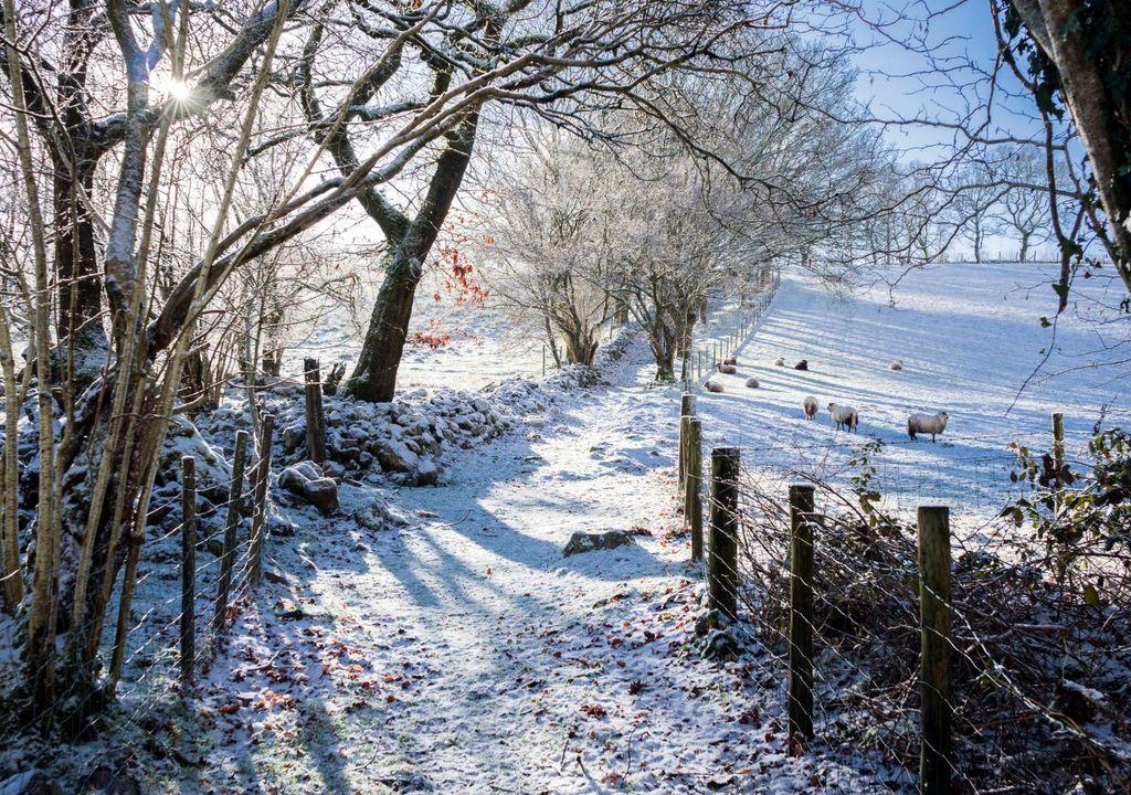 UK snow days set to reduce dramatically under worst climate change scenario