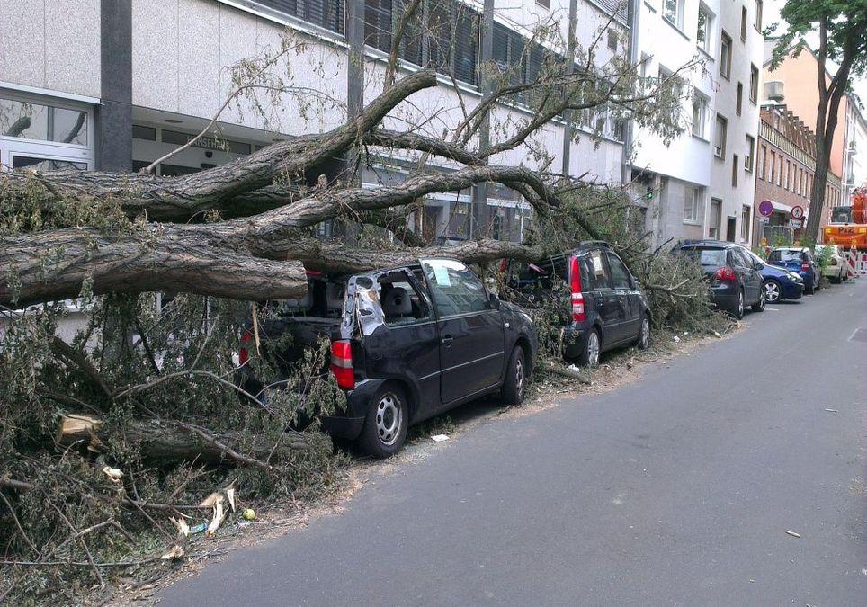 Sturm bringt Schäden