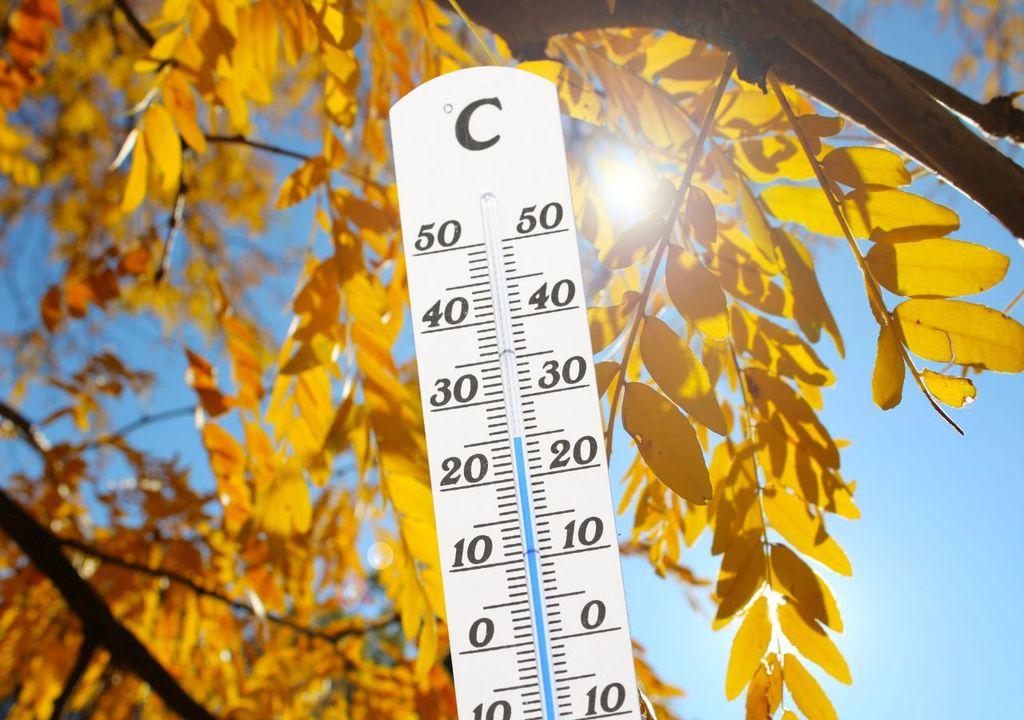 25 Grad