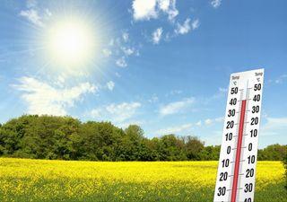 Sommerprognose 2020: Kommt der 3.Dürresommer in Folge?