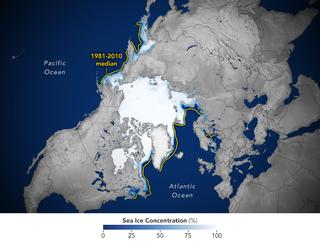 Sorpresa del comportamiento del hielo marino de este invierno cálido