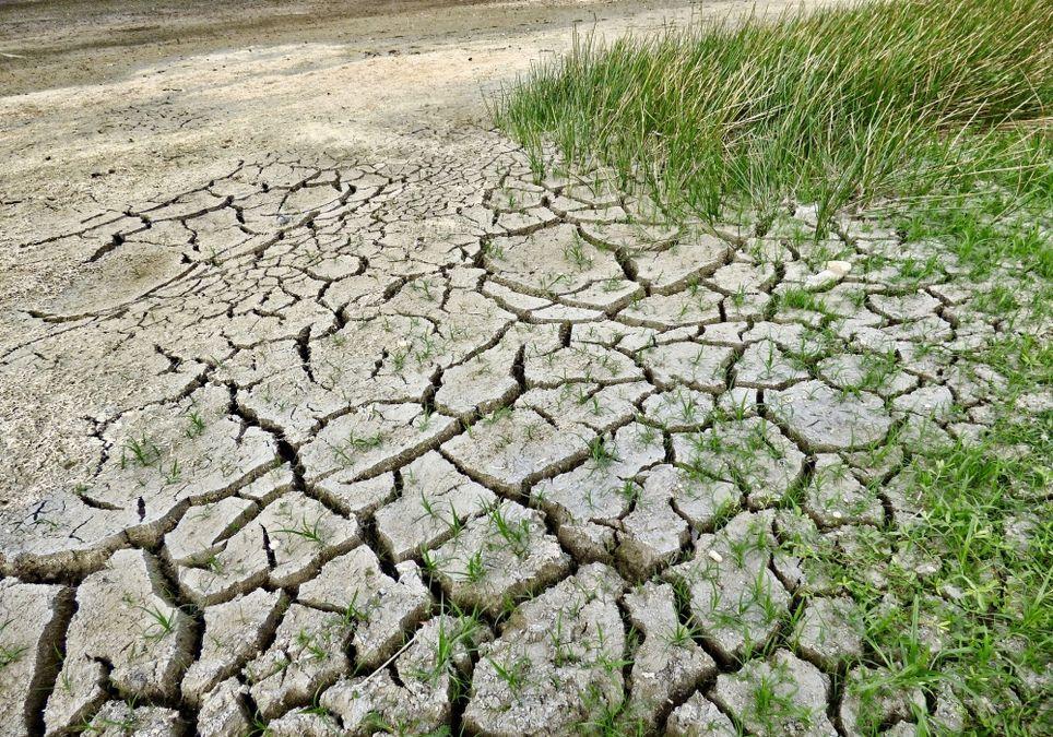 Dürre geht weiter