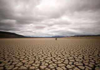 Sul da África vive uma das piores secas do século