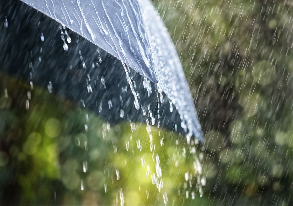 Sunny spells and scattered showers but turning blustery and cooler with heavy rain later in the week.